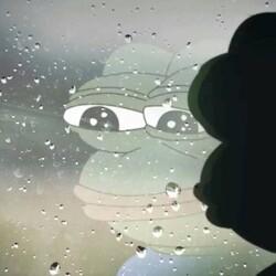 안습 눈물 짠하다 개구리 창문 유리창 빗물 내모습 솔로 슬픈 커플 쏠로 혼자 외로움