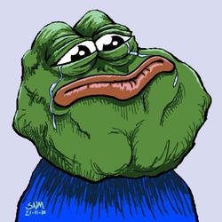 슬개짤 슬픈 개구리 슬픈개구리 짤방