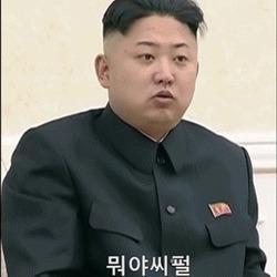 공유 도깨비 김정은 만능짤 움짤 뭐야 씨펄 시펄 손가락 북한