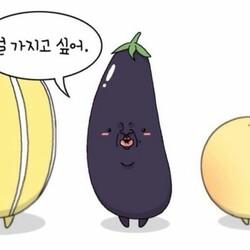 널 가지고 싶어 가지 참외 채소 과일 사랑 고백