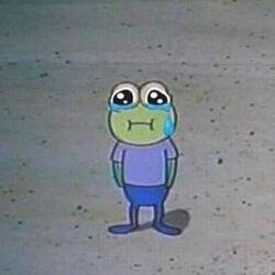 슬개짤 슬픈 개구리 눈물 혼자 홀로 외로움