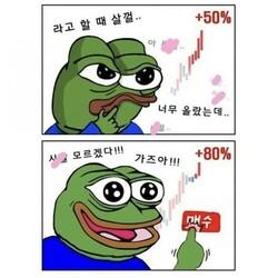비트코인 개구리 슬개짤 슬픈 코인 주식 페페 떡락 떡상 개미털기 손절 매도 후회 매수